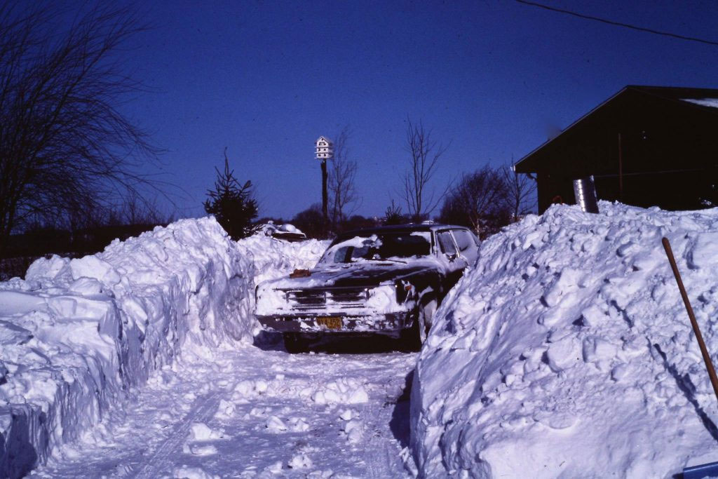 Winter Driveway and Snowbanks