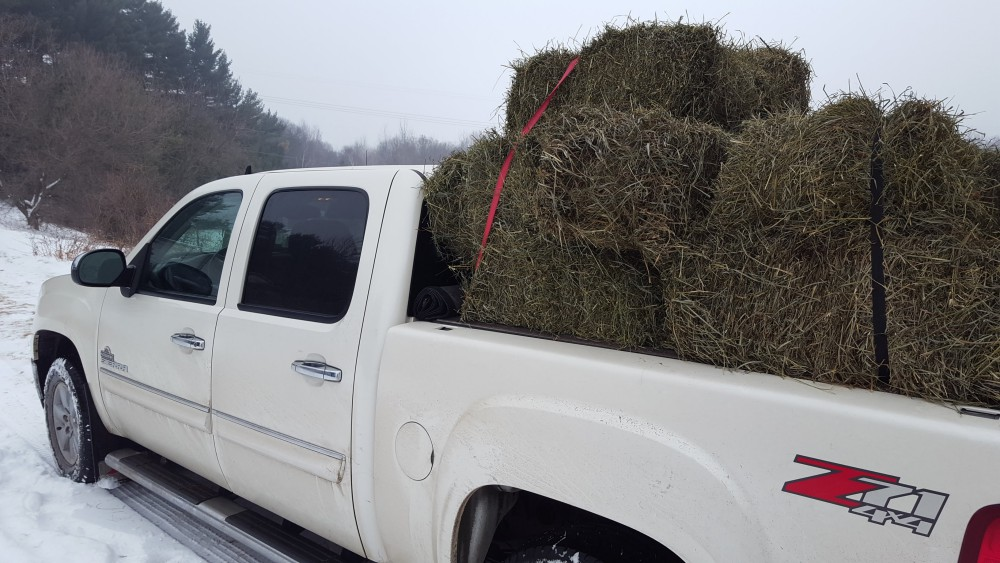 Hauling hay in the winter