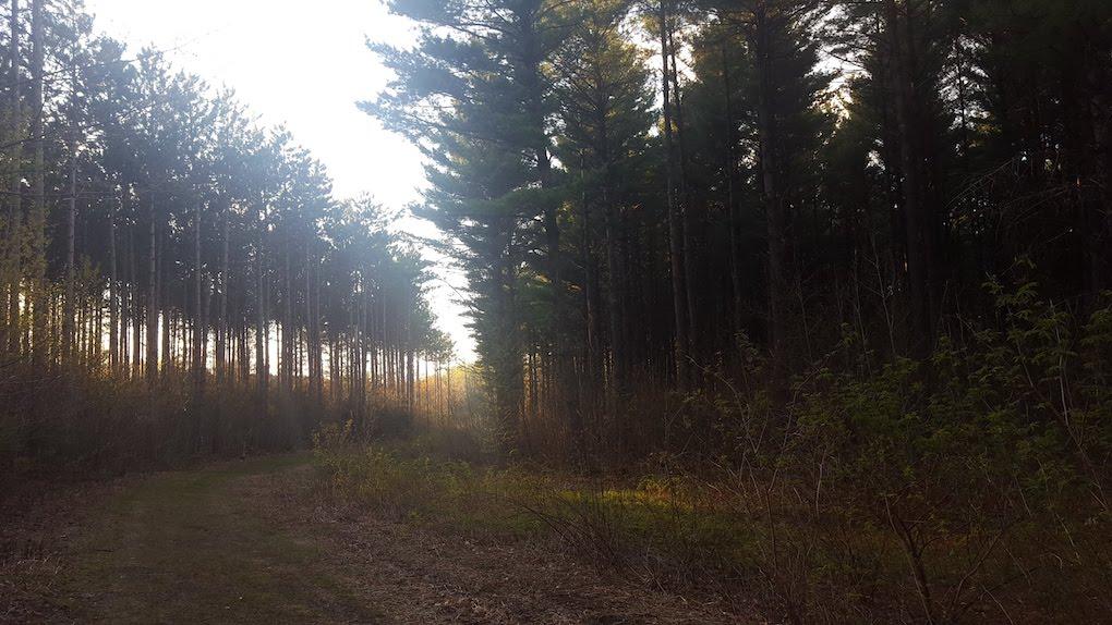 Hoffman Hills State Recreation Area
