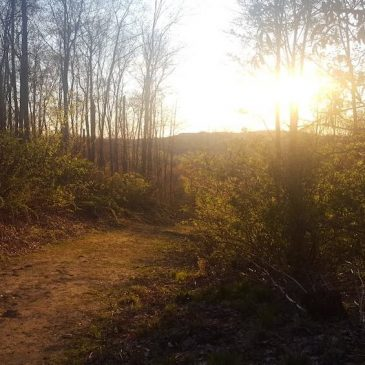 Sunset Hike at Hoffman Hills