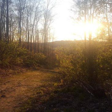 Sunset Hike at Hoffman Hills